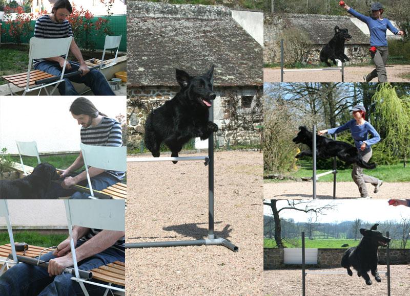 Fabrication d'obstacles d'agility Haie+saut